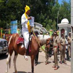 vellore; Come alone on horseback and file a nomination