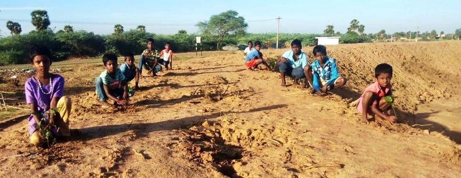 Hope for the future that will blossom ... Boys and youth who have moved the sapling nut !!!