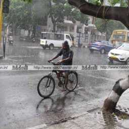 heavy rains tamilnadu regional meteorological centre