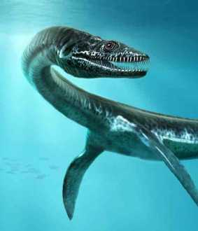 Loch Ness monster might be a giant eel