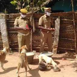 pudukkottai police provide foods for dogs