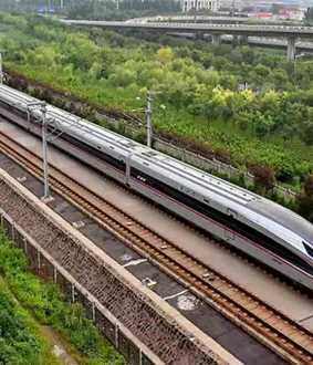 53000 trees to be cut down for mumbai gujarat bullet train