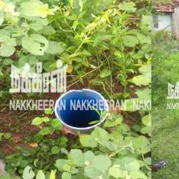 deepwell... Nakkeeran brought to the attention of the officer