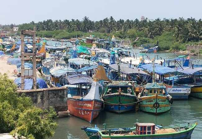 Fishing ban! Fish prices likely to rise
