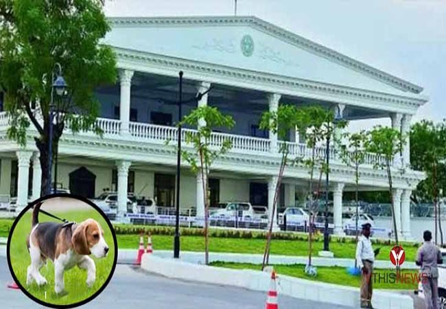 telangana cm home dog dies doctor police fir filled