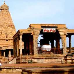 thanjai district temple reforming festival high court madurai branch