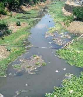 Sewage mix in Uyyakkondan river; Chief Minister ordered, the district administration to find out! Court of Question!