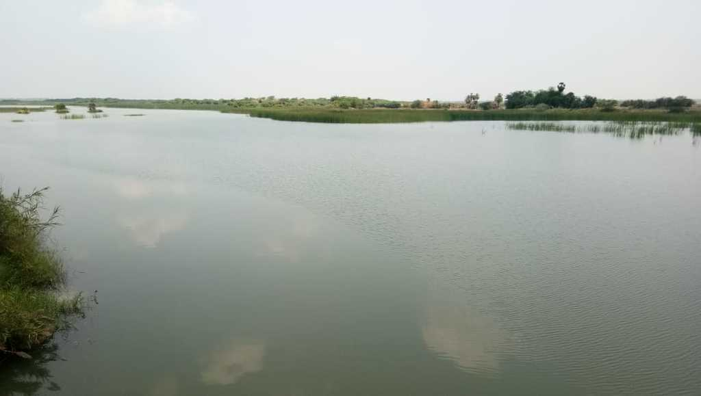 Cuddalore District Water Levels to cure the thirst of the people of Chennai