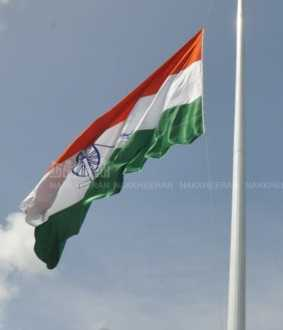 Tamilnadu Congress Flag