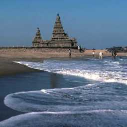 tamilnadu cm arrive mamallapuram in tomorrow india and china leaders meet