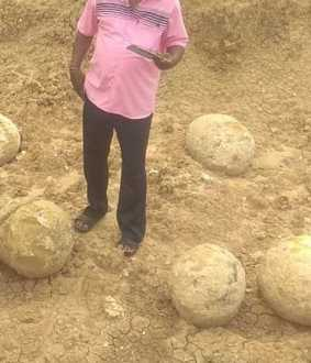 Dinosaur eggs found in Perambalur?