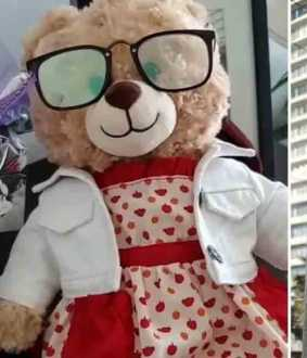 people are rallying around the search for a missing teddy bear in Vancouver