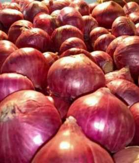 onions price tamilnadu government decide peoples