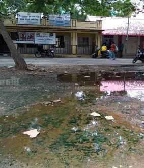 SALEM Municipal office complex for dengue mosquito production