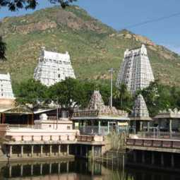 Corruption at the Annamalayar temple