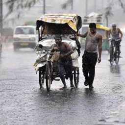 tamilnadu all districts heavy rain