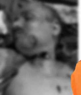 hindu mahasabha leader passed away
