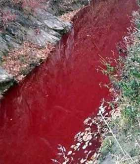 south korea imjin river filled with pig blood