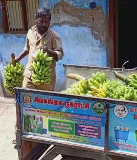 SIVAGANGAI DISTRICT CHEMICAL ADDED BANANAS FSSAI OFFICERS