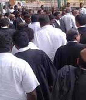 20 thousand a month for young lawyers affected by curfew! Request for Tamil Chief Minister!