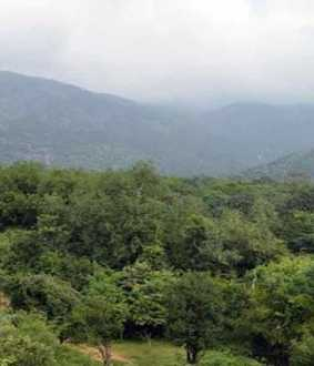Case for protecting the natural resources of the mountains! National Green Tribunal to be approached