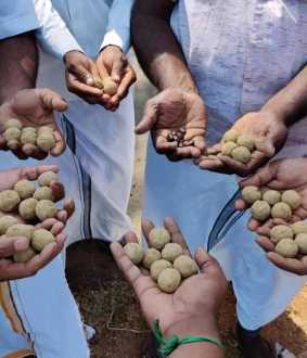 thanjavur district seeds balls spreaded
